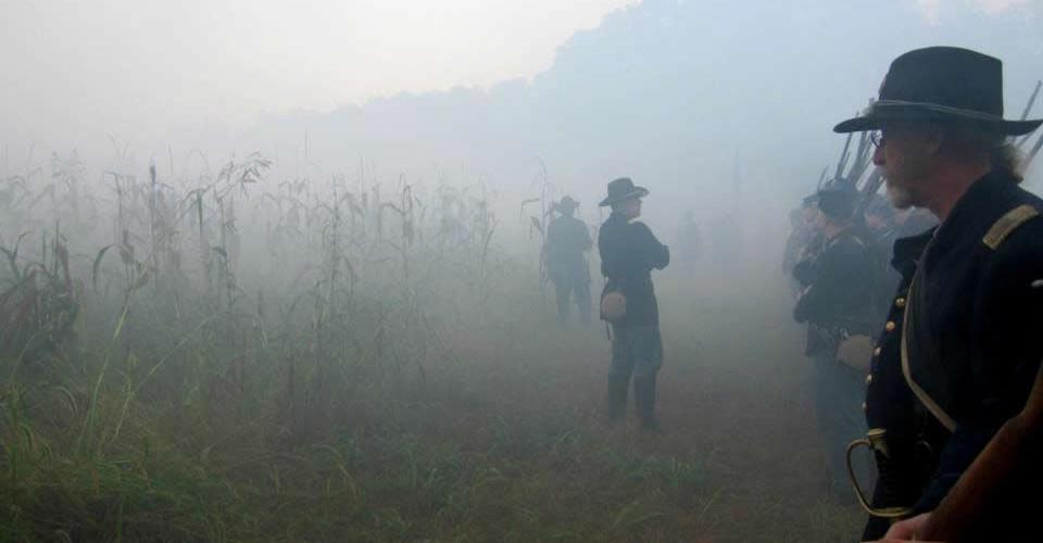fog-cok-wide